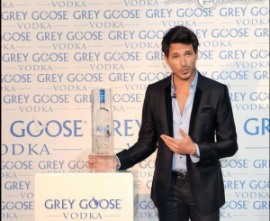 Grey Goose on the rock